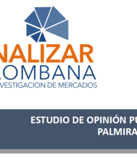 ESTUDIO DE OPINION PUBLICA PALMIRA
